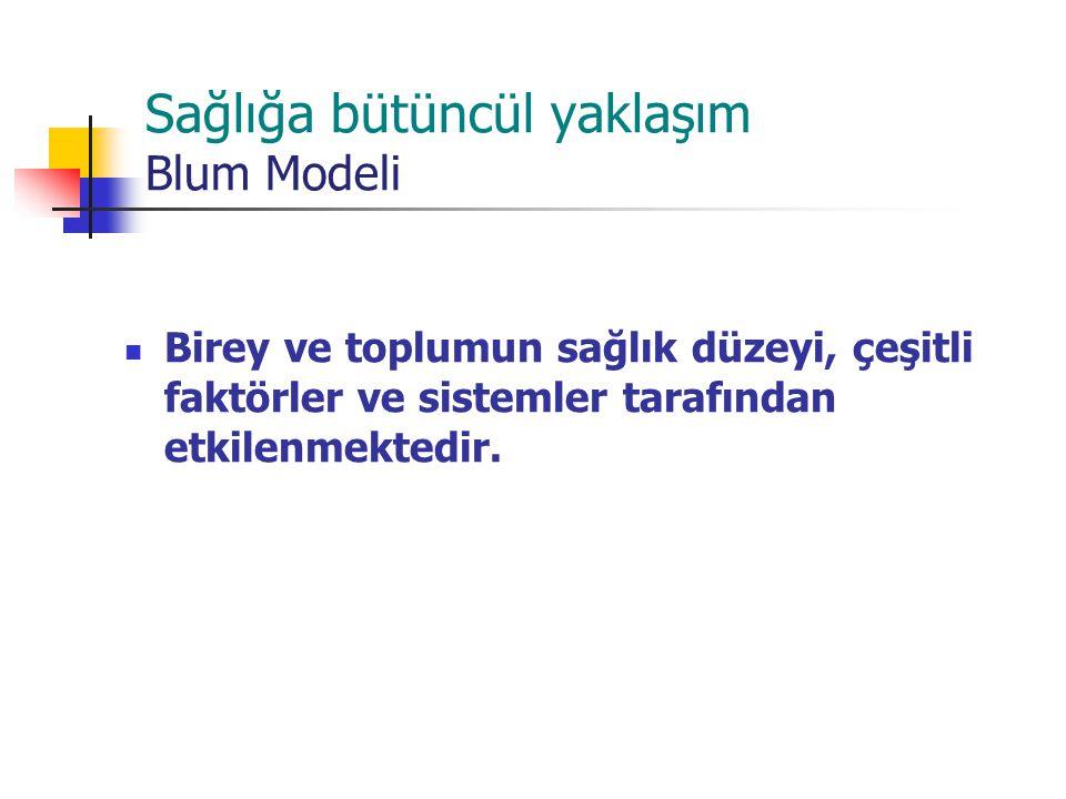 Sağlığa bütüncül yaklaşım Blum Modeli