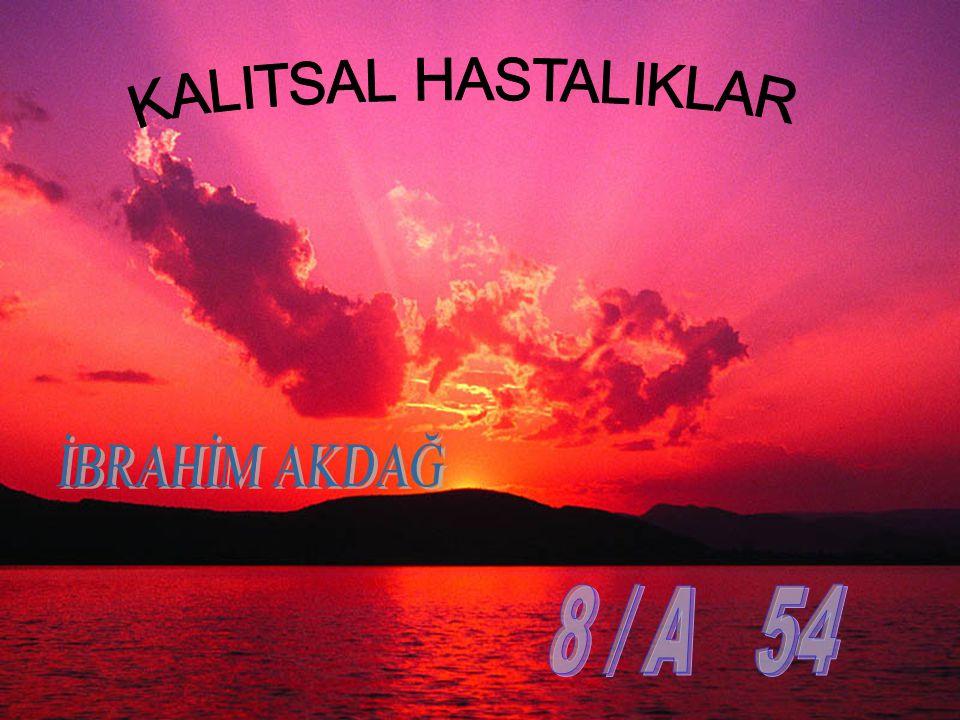 KALITSAL HASTALIKLAR İBRAHİM AKDAĞ 8 / A 54