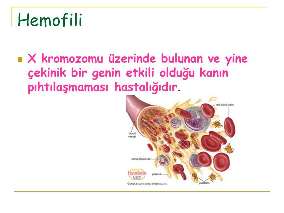 Hemofili X kromozomu üzerinde bulunan ve yine çekinik bir genin etkili olduğu kanın pıhtılaşmaması hastalığıdır.