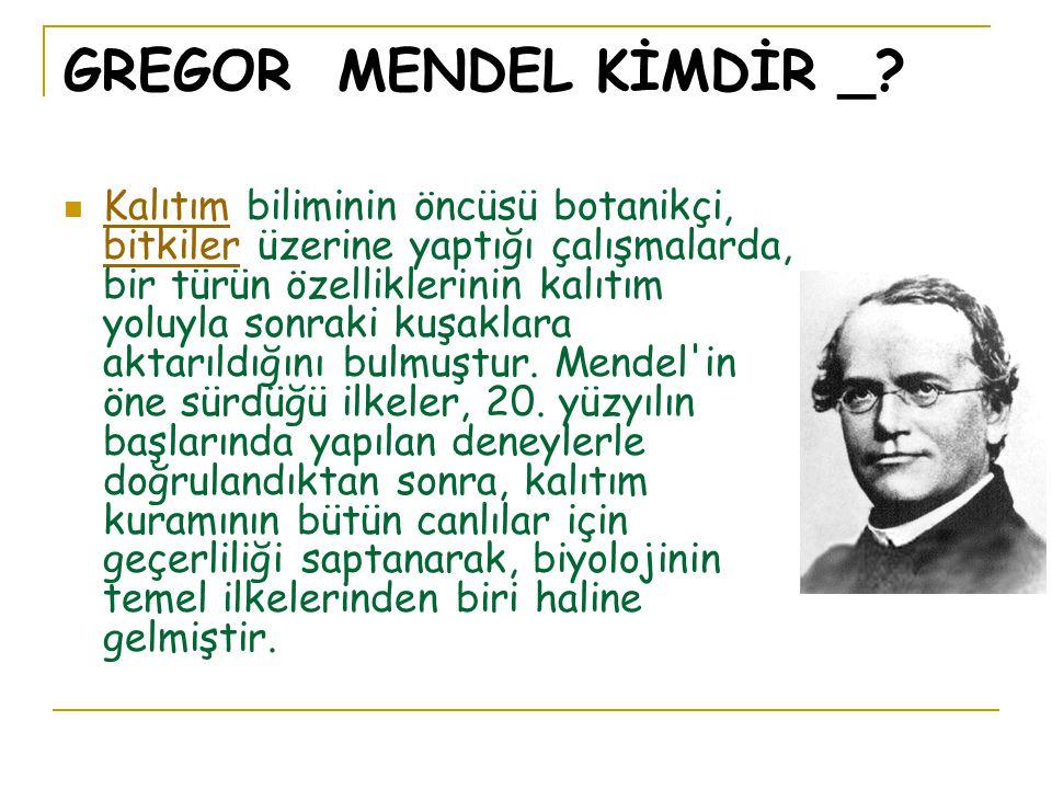 GREGOR MENDEL KİMDİR _