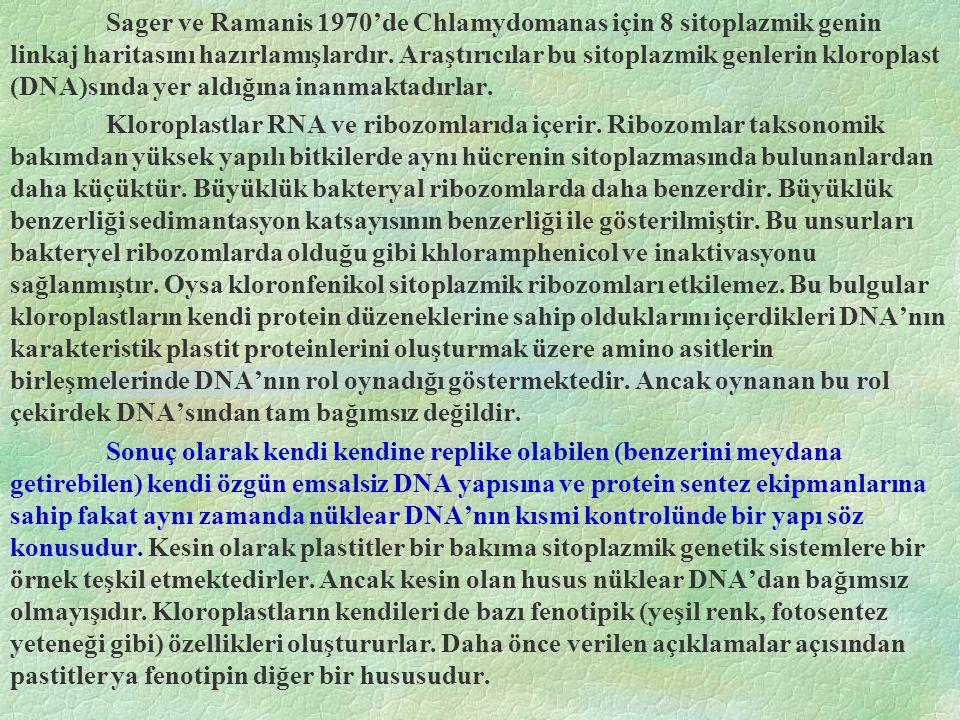 Sager ve Ramanis 1970'de Chlamydomanas için 8 sitoplazmik genin linkaj haritasını hazırlamışlardır. Araştırıcılar bu sitoplazmik genlerin kloroplast (DNA)sında yer aldığına inanmaktadırlar.