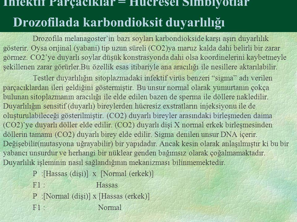 İnfektif Parçacıklar = Hücresel Simbiyotlar Drozofilada karbondioksit duyarlılığı