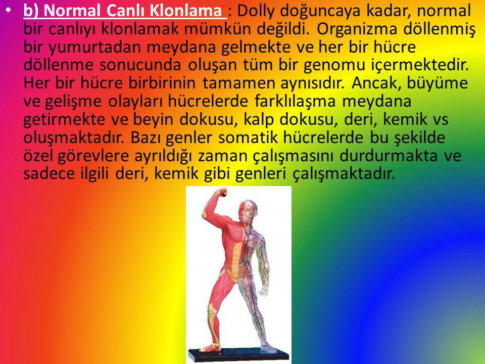 b) Normal Canlı Klonlama : Dolly doğuncaya kadar, normal bir canlıyı klonlamak mümkün değildi.