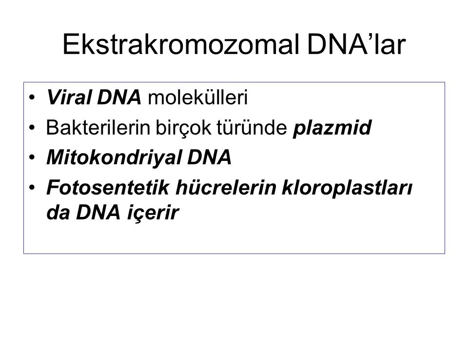 Ekstrakromozomal DNA'lar