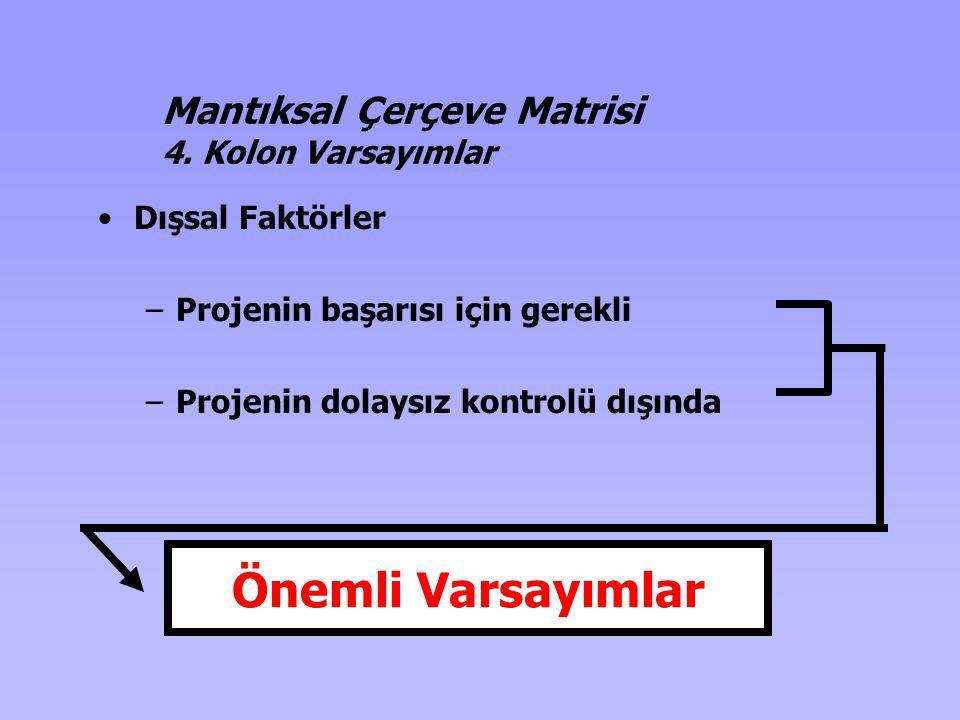 Önemli Varsayımlar Mantıksal Çerçeve Matrisi 4. Kolon Varsayımlar