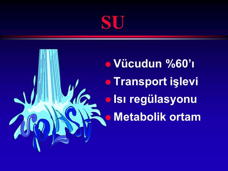 SU Vücudun %60'ı Transport işlevi Isı regülasyonu Metabolik ortam