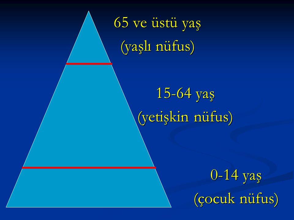 65 ve üstü yaş (yaşlı nüfus) 15-64 yaş (yetişkin nüfus) 0-14 yaş (çocuk nüfus)