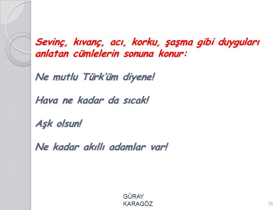 Sevinç, kıvanç, acı, korku, şaşma gibi duyguları anlatan cümlelerin sonuna konur: Ne mutlu Türk'üm diyene! Hava ne kadar da sıcak! Aşk olsun! Ne kadar akıllı adamlar var!