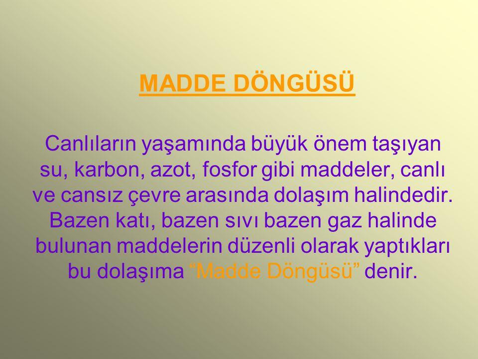 MADDE DÖNGÜSÜ