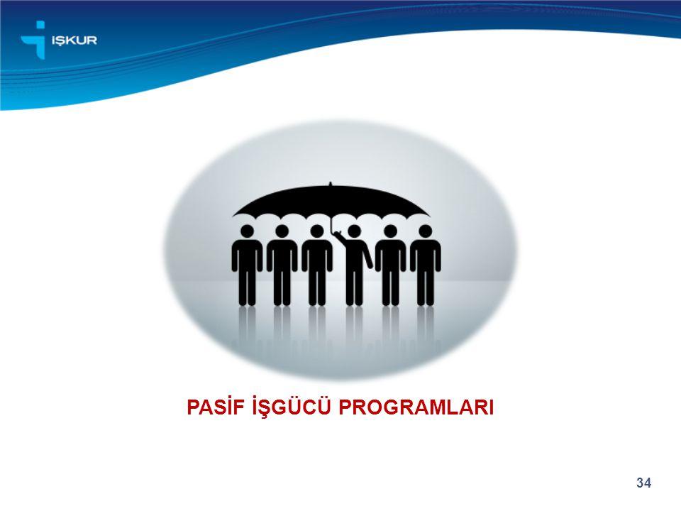 PASİF İŞGÜCÜ PROGRAMLARI