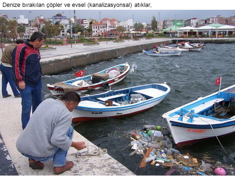 Denize bırakılan çöpler ve evsel (kanalizasyonsal) atıklar,