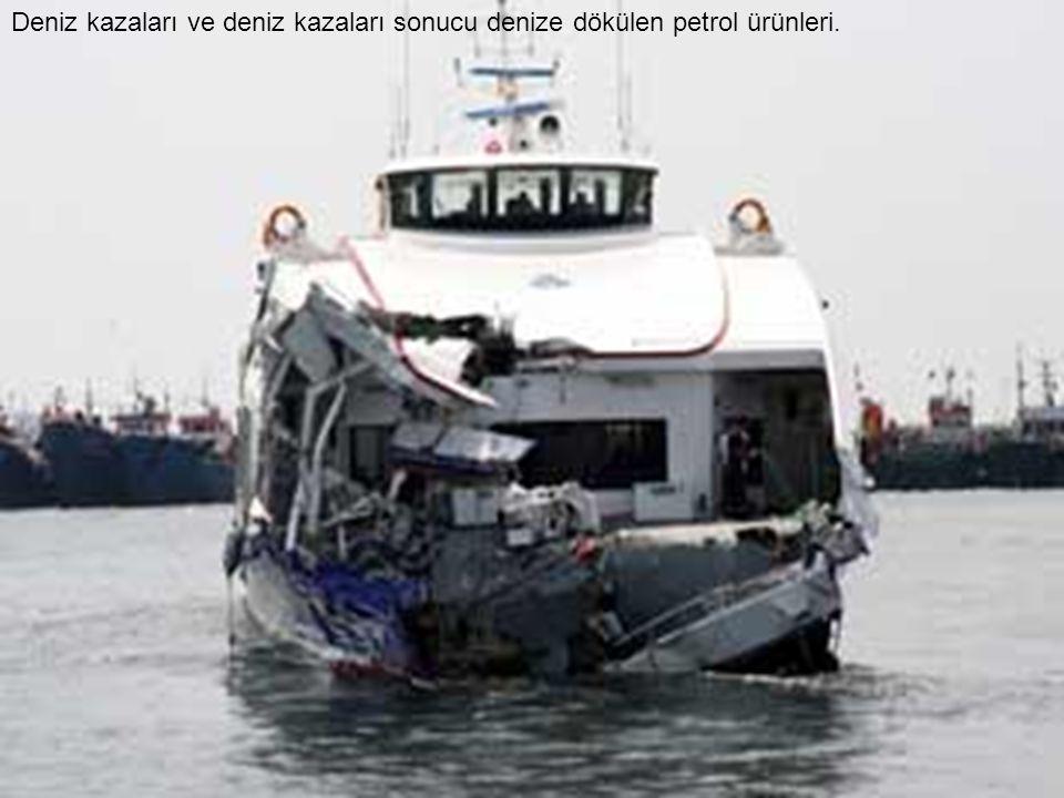 Deniz kazaları ve deniz kazaları sonucu denize dökülen petrol ürünleri.