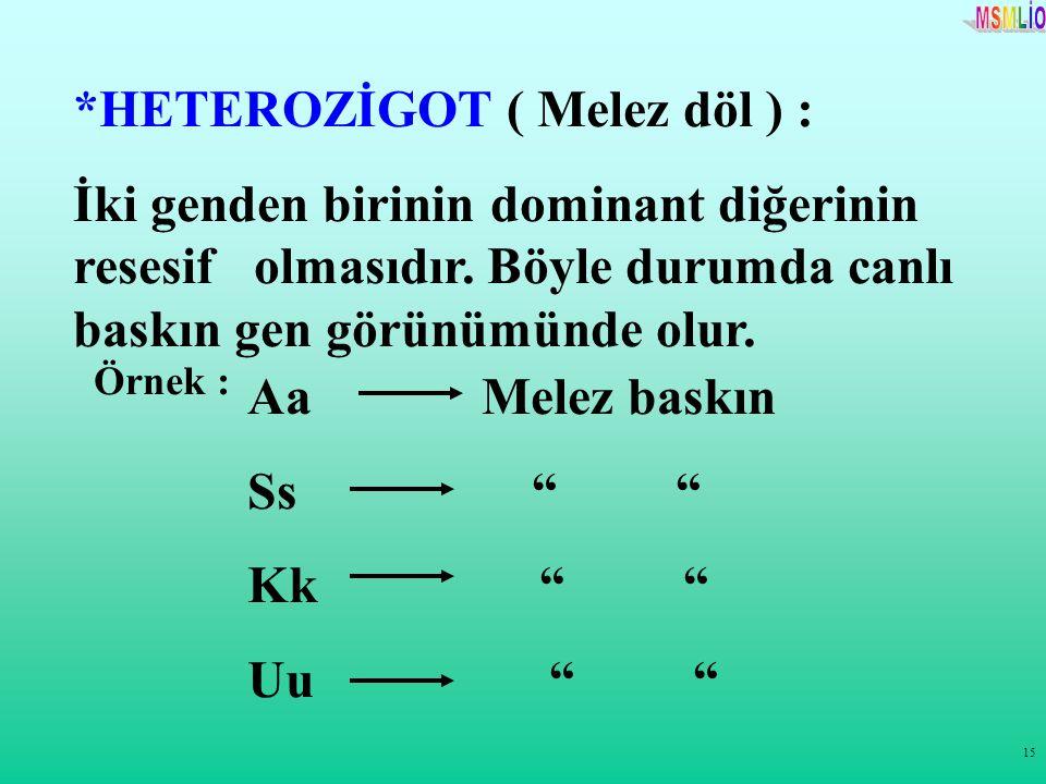 *HETEROZİGOT ( Melez döl ) :