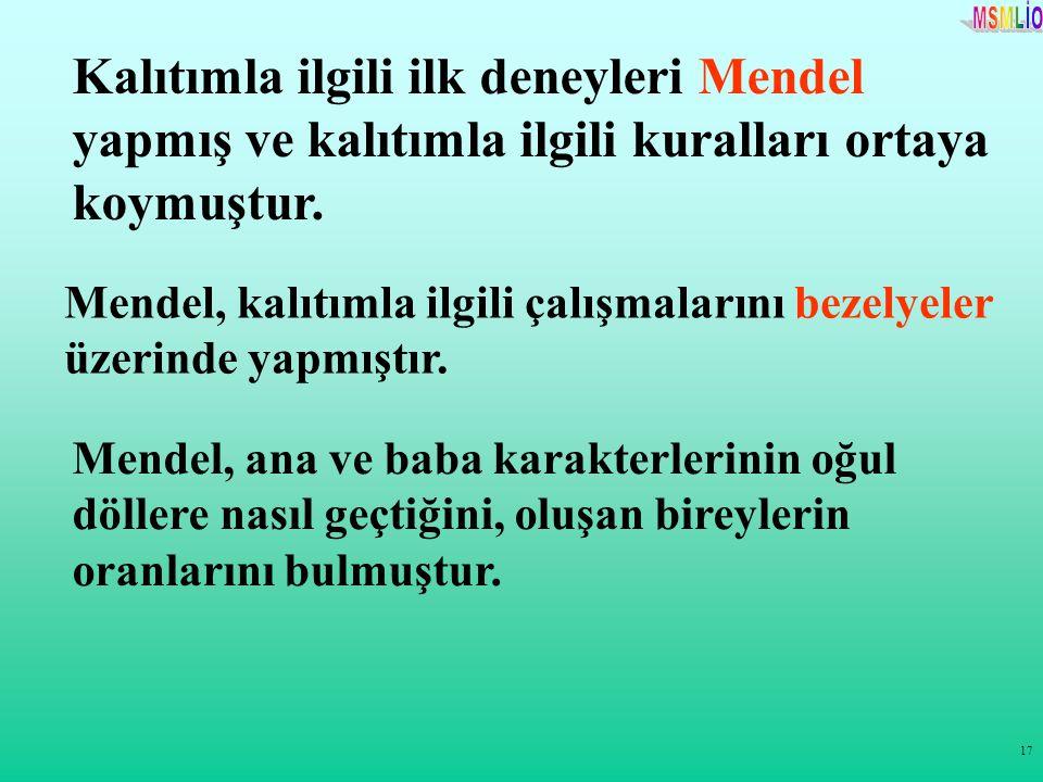 Kalıtımla ilgili ilk deneyleri Mendel yapmış ve kalıtımla ilgili kuralları ortaya koymuştur.
