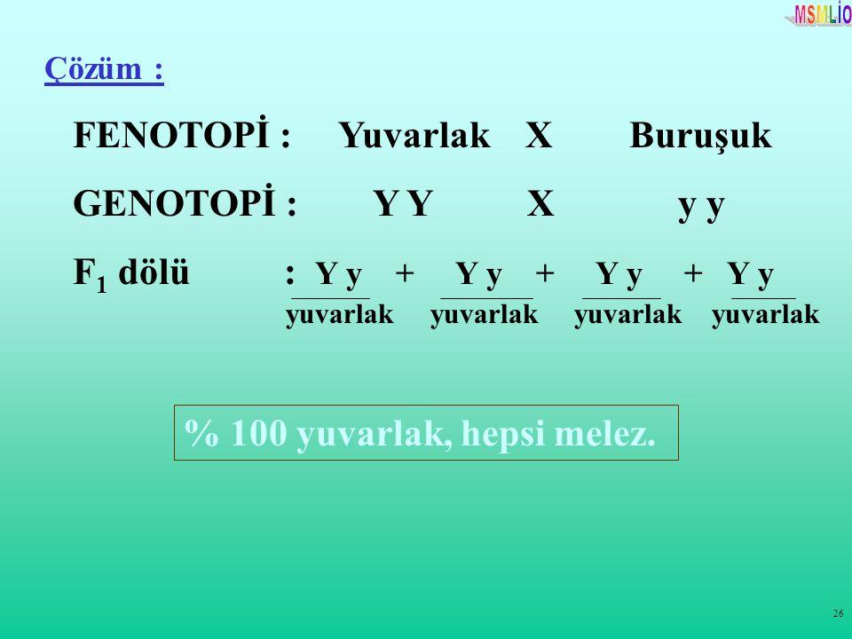 FENOTOPİ : Yuvarlak X Buruşuk GENOTOPİ : Y Y X y y