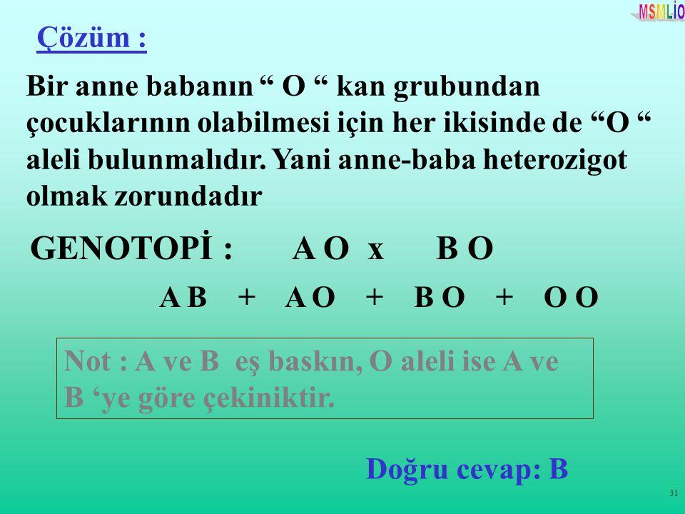 GENOTOPİ : A O x B O Çözüm :