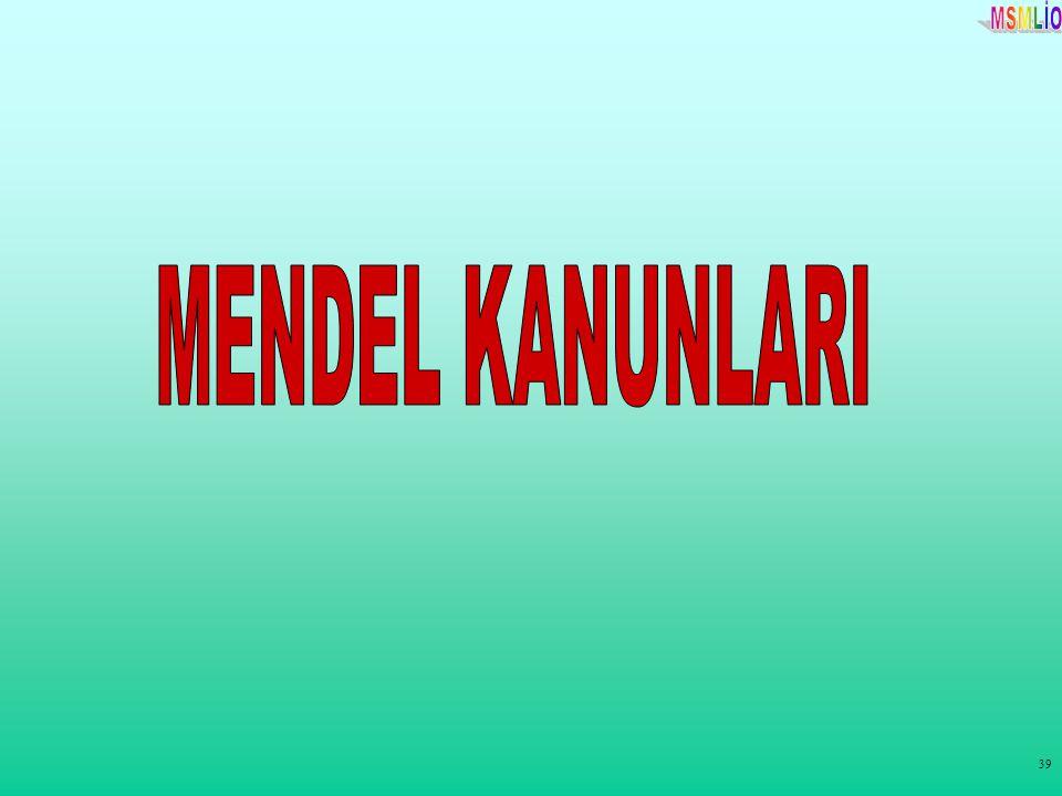 MENDEL KANUNLARI