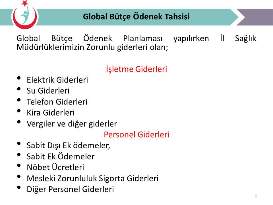 Global Bütçe Ödenek Tahsisi
