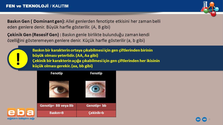 ! FEN ve TEKNOLOJİ / KALITIM