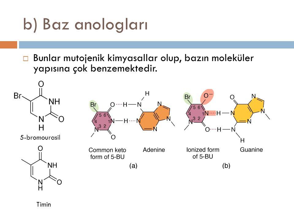 b) Baz anologları Bunlar mutojenik kimyasallar olup, bazın moleküler yapısına çok benzemektedir. 5-bromourasil.