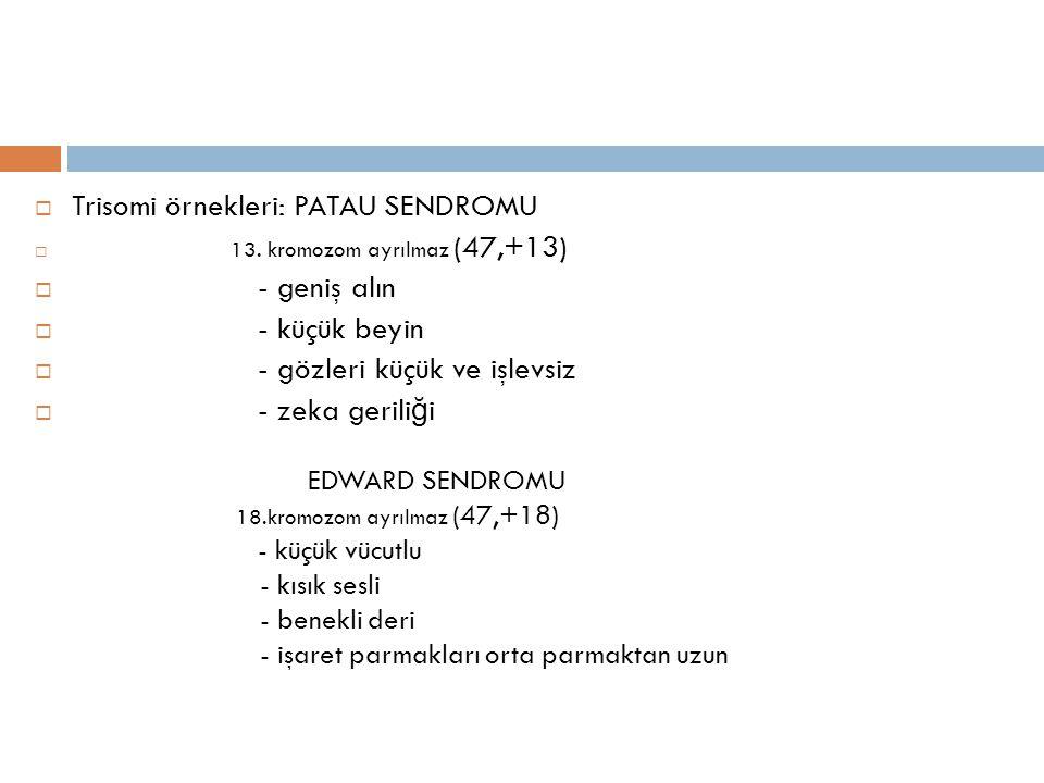 Trisomi örnekleri: PATAU SENDROMU - geniş alın - küçük beyin