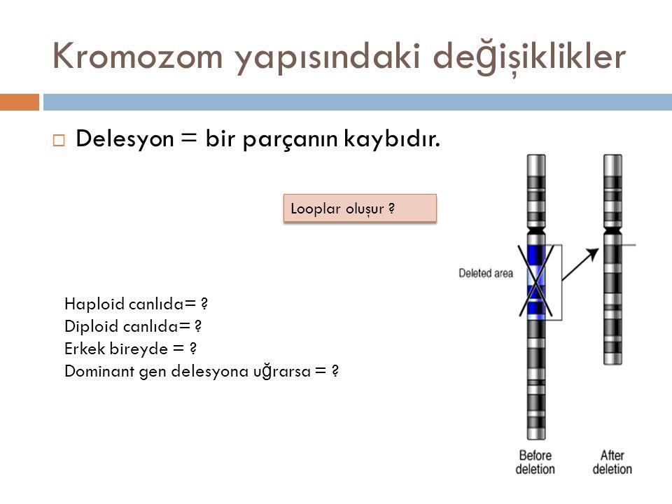 Kromozom yapısındaki değişiklikler