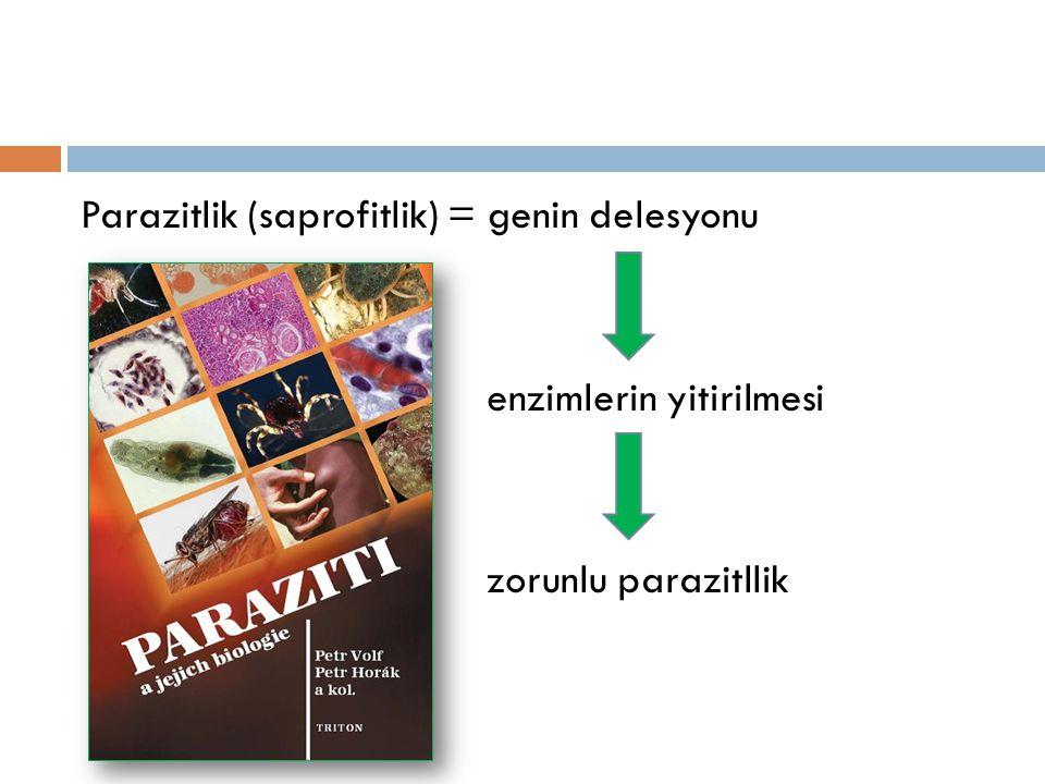 Parazitlik (saprofitlik) = genin delesyonu enzimlerin yitirilmesi zorunlu parazitllik