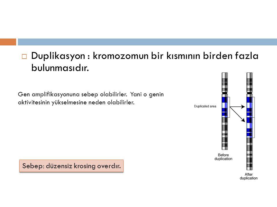 Duplikasyon : kromozomun bir kısmının birden fazla bulunmasıdır.