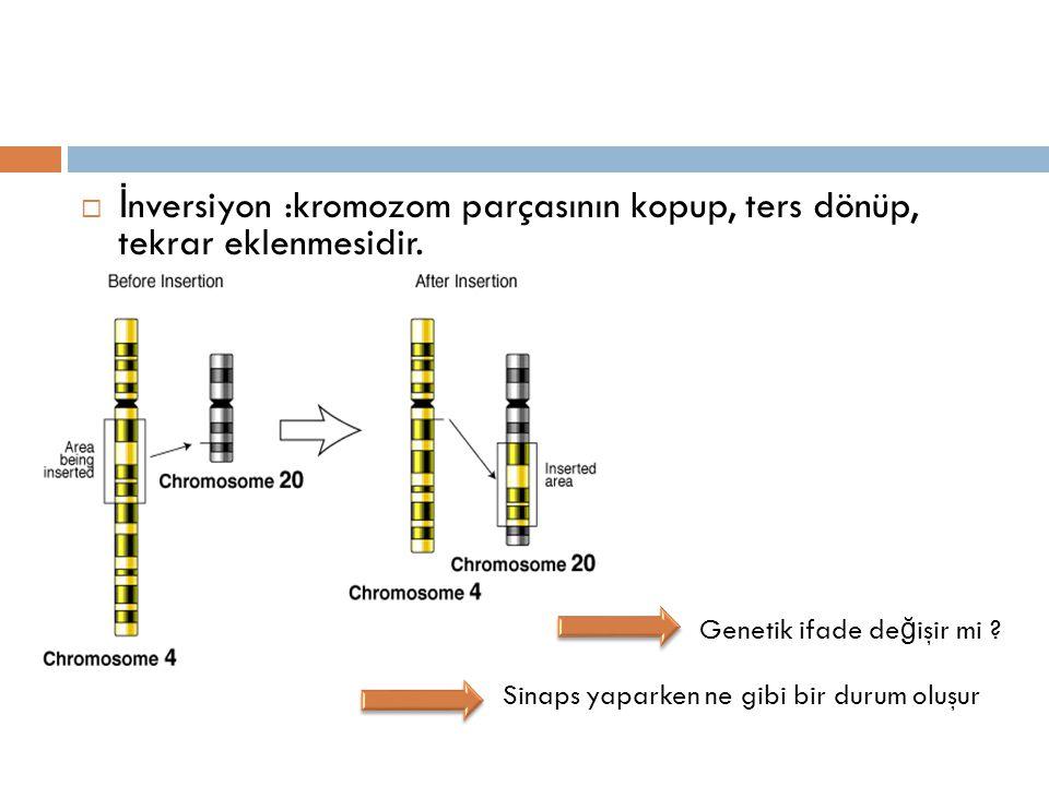 İnversiyon :kromozom parçasının kopup, ters dönüp, tekrar eklenmesidir.