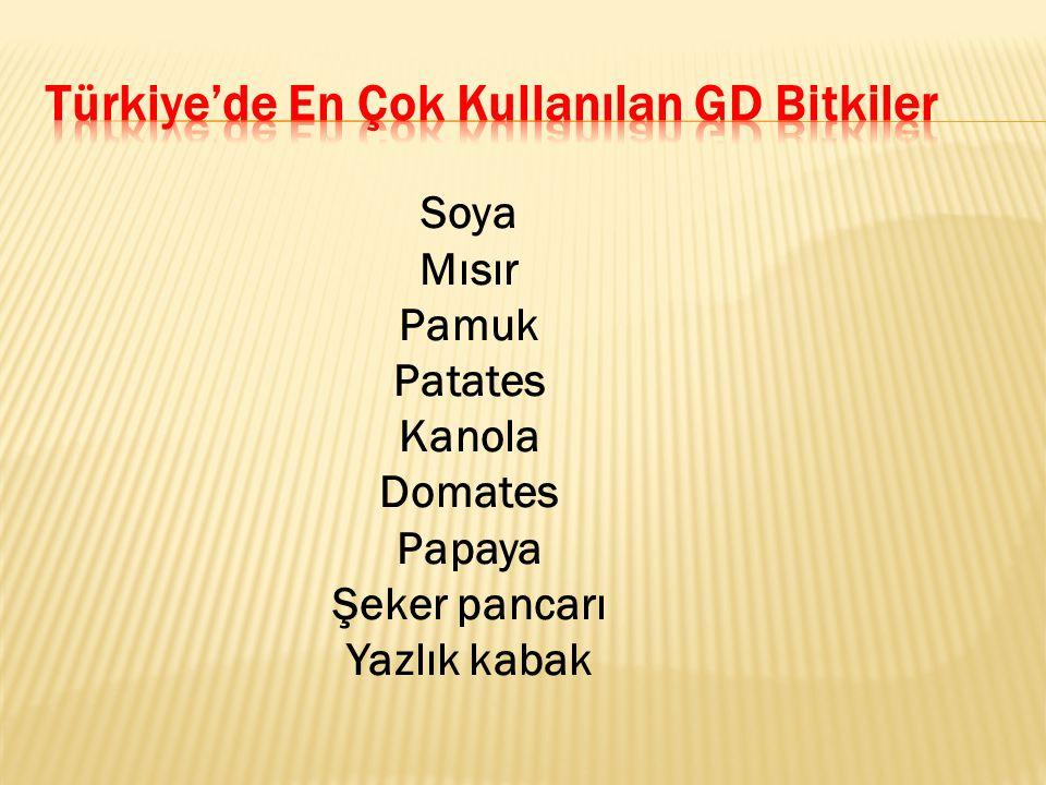 Türkiye'de En Çok Kullanılan GD Bitkiler