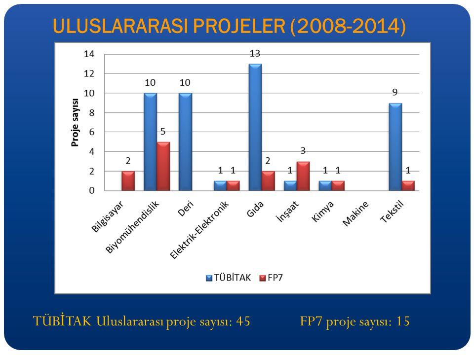 ULUSLARARASI PROJELER (2008-2014)