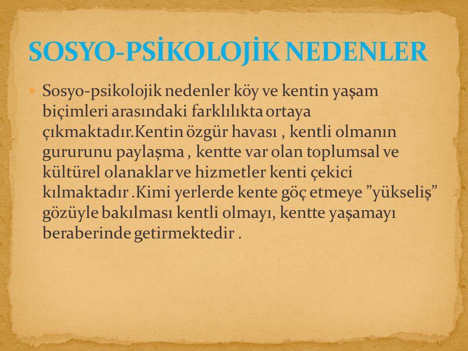 SOSYO-PSİKOLOJİK NEDENLER