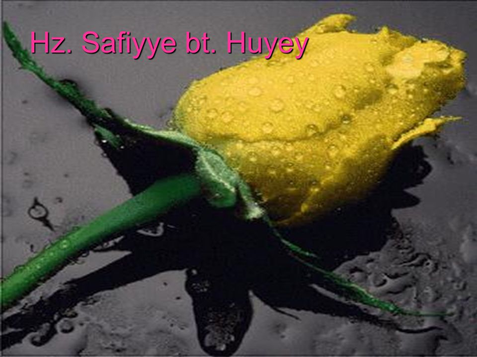 Hz. Safiyye bt. Huyey
