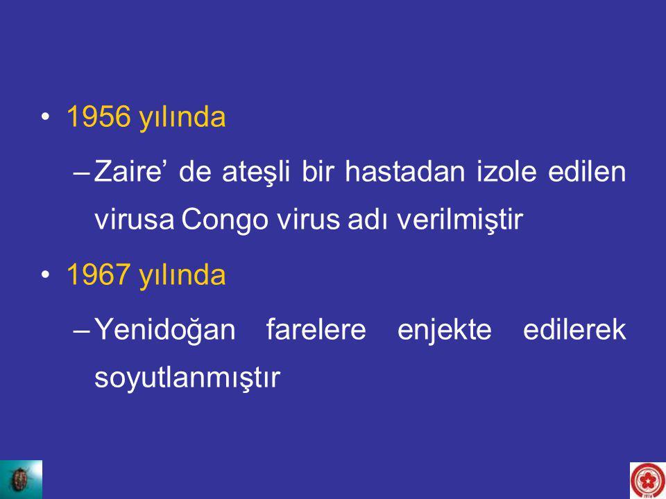 1956 yılında Zaire' de ateşli bir hastadan izole edilen virusa Congo virus adı verilmiştir. 1967 yılında.