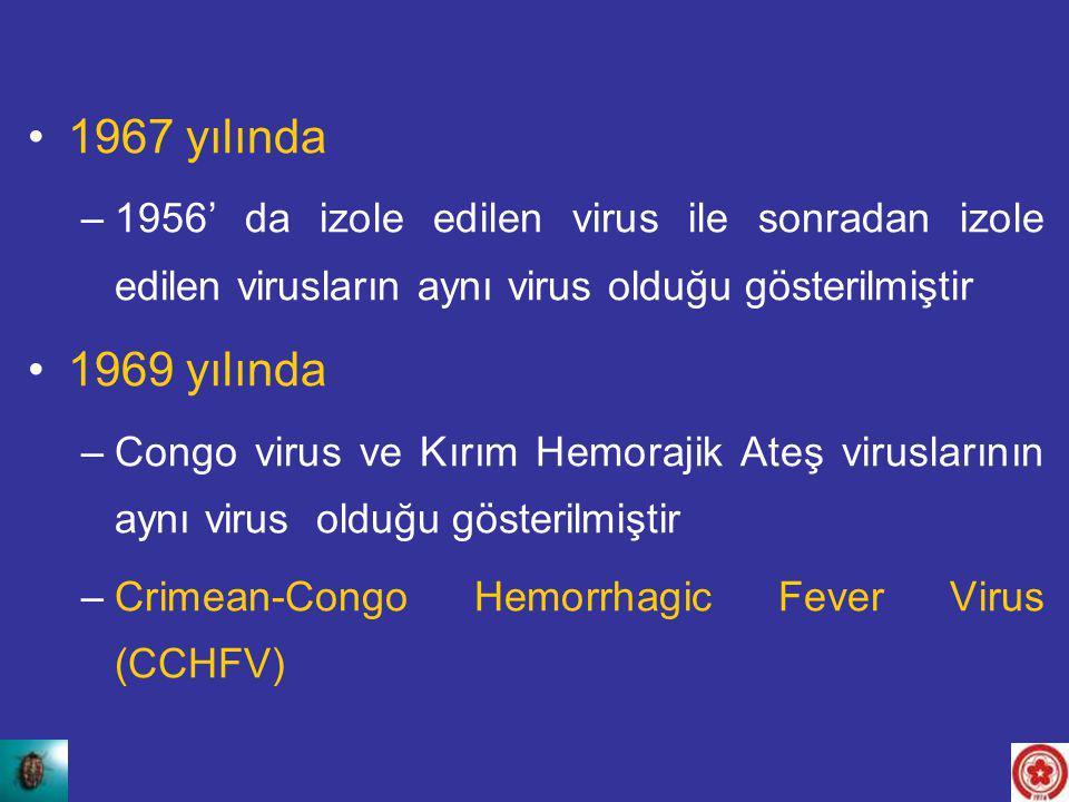 1967 yılında 1956' da izole edilen virus ile sonradan izole edilen virusların aynı virus olduğu gösterilmiştir.