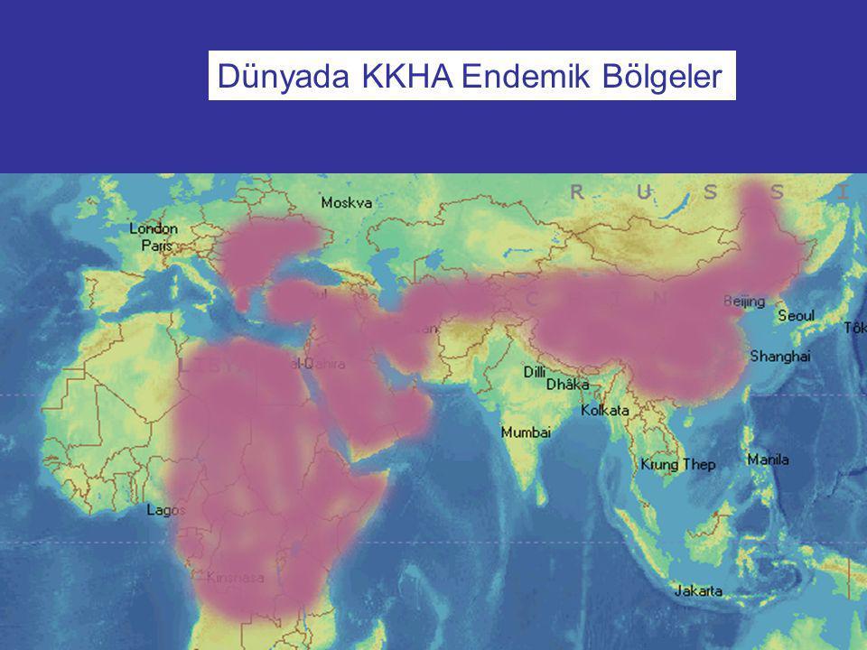 Dünyada KKHA Endemik Bölgeler