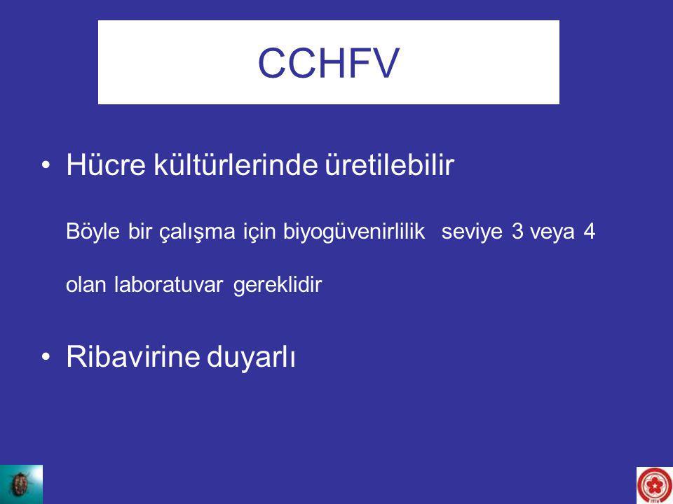 CCHFV Hücre kültürlerinde üretilebilir Ribavirine duyarlı