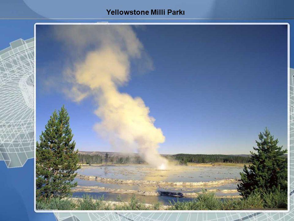 Yellowstone Milli Parkı
