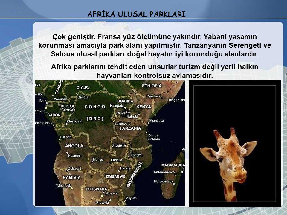 AFRİKA ULUSAL PARKLARI
