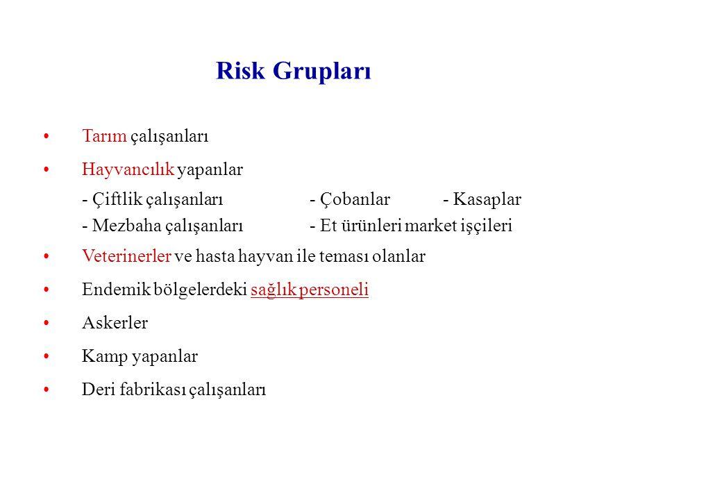 Risk Grupları Tarım çalışanları Hayvancılık yapanlar
