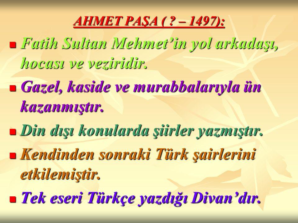 Fatih Sultan Mehmet'in yol arkadaşı, hocası ve veziridir.