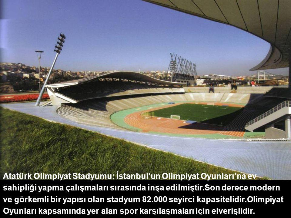Atatürk Olimpiyat Stadyumu: İstanbul'un Olimpiyat Oyunları'na ev sahipliği yapma çalışmaları sırasında inşa edilmiştir.Son derece modern ve görkemli bir yapısı olan stadyum 82.000 seyirci kapasitelidir.Olimpiyat Oyunları kapsamında yer alan spor karşılaşmaları için elverişlidir.
