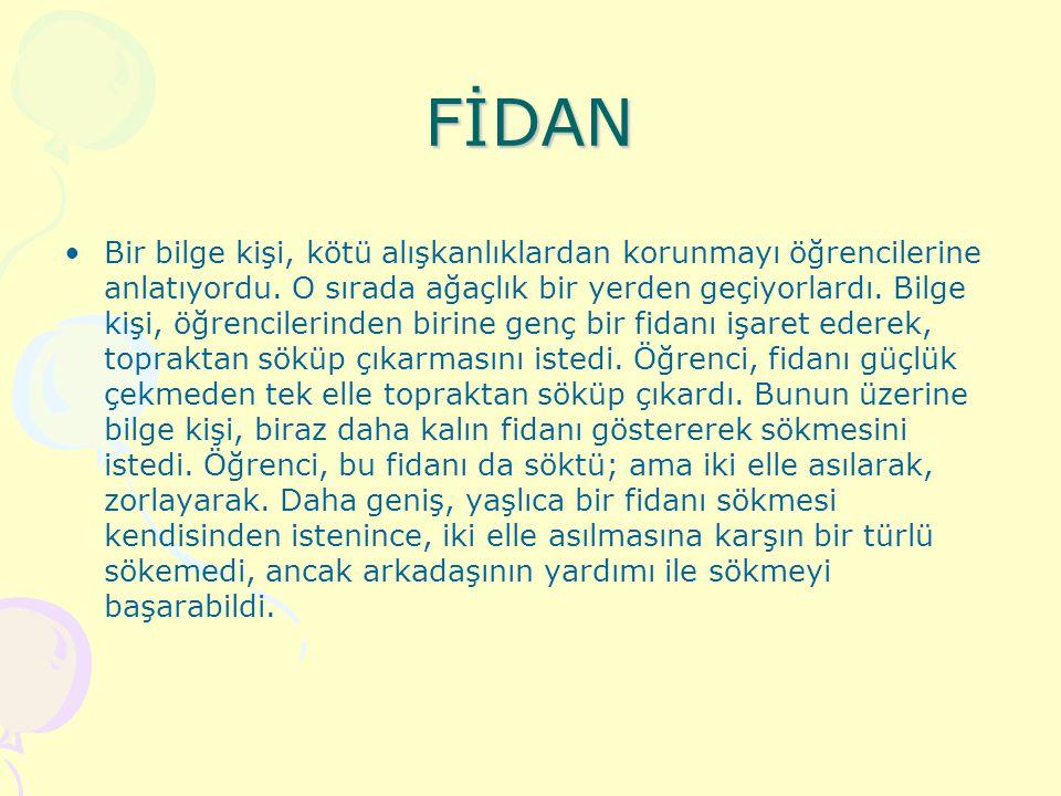 FİDAN