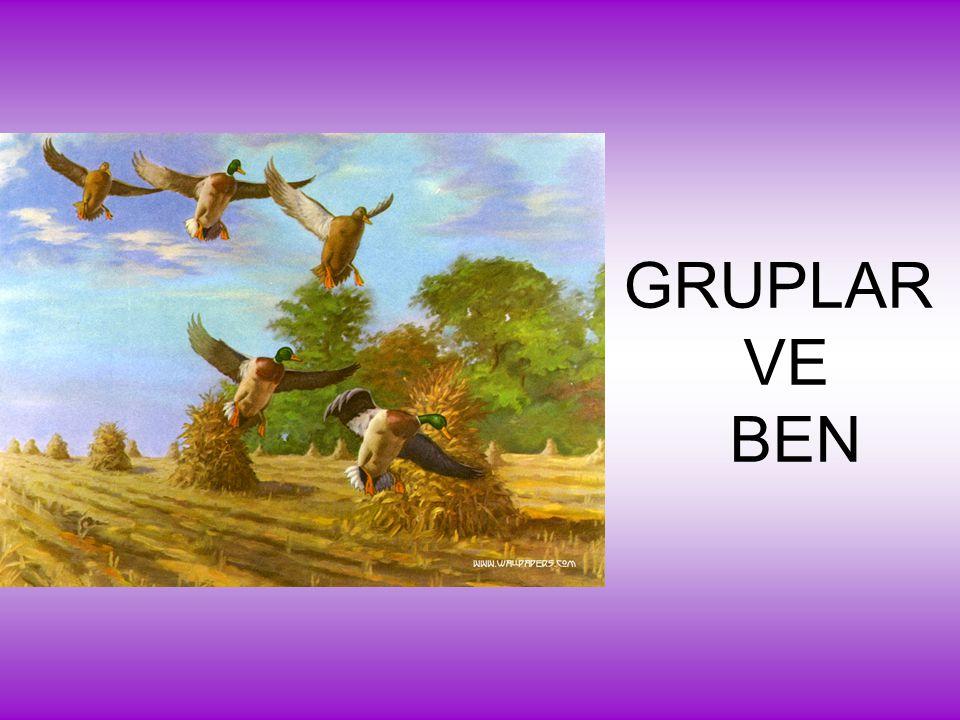 GRUPLAR VE BEN