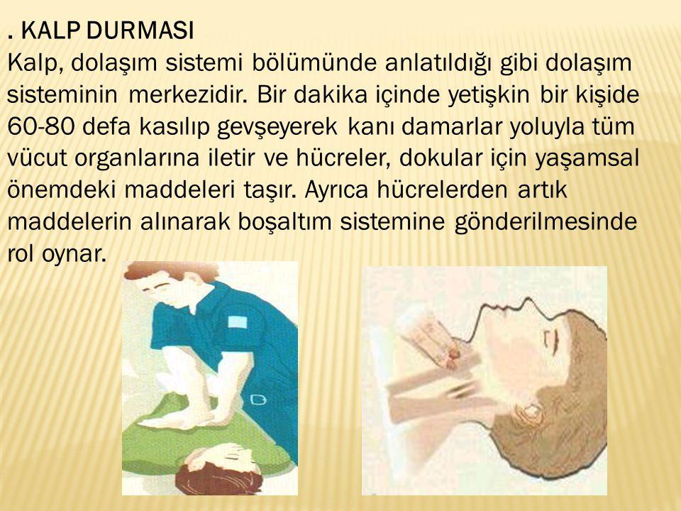KALP DURMASI Kalp, dolaşım sistemi bölümünde anlatıldığı gibi dolaşım sisteminin merkezidir.