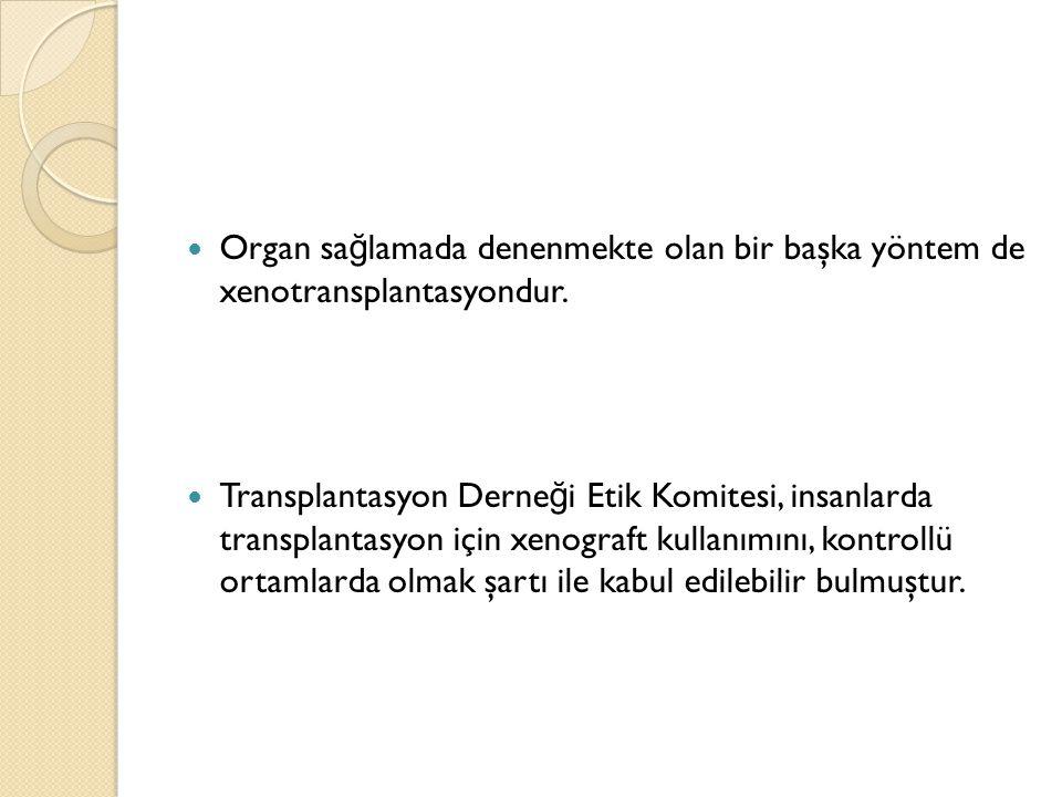 Organ sağlamada denenmekte olan bir başka yöntem de xenotransplantasyondur.