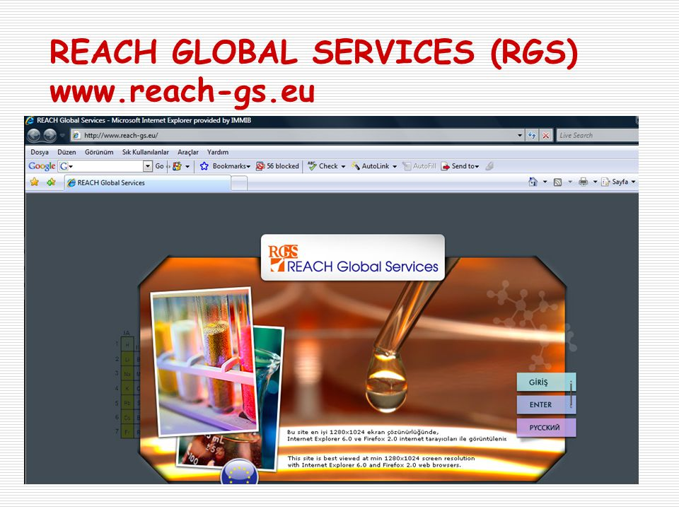 REACH GLOBAL SERVICES (RGS) www.reach-gs.eu