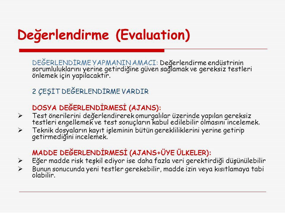 Değerlendirme (Evaluation)