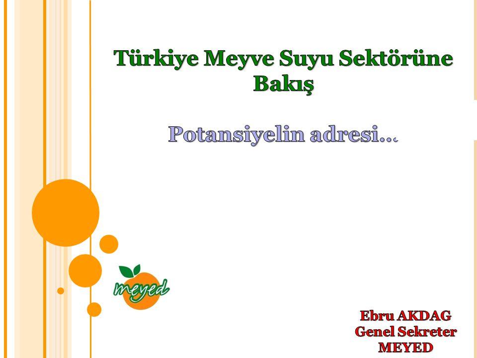Türkiye Meyve Suyu Sektörüne Bakış