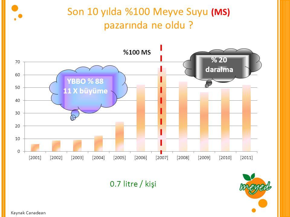 Son 10 yılda %100 Meyve Suyu (MS)